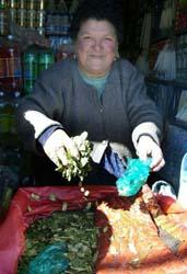 coca-leaf-peru.jpg