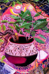 painting-ayahuasca.jpg